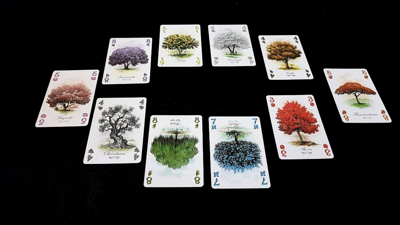 Cards in Arboretum