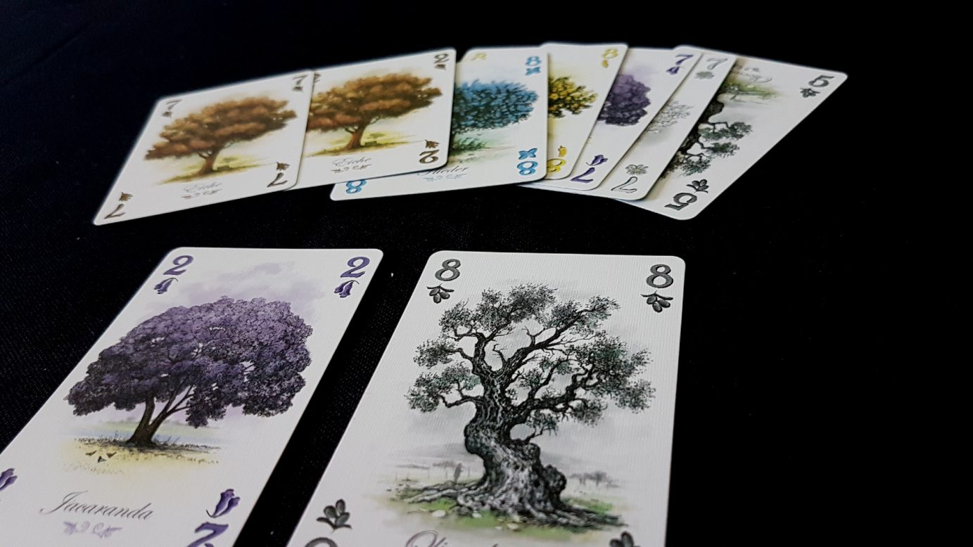 Arboretum as one of the best board games for couples