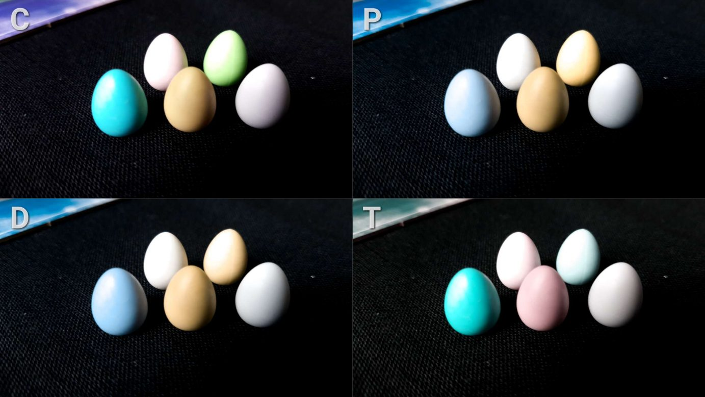 Colour blindness and eggs in Wingspan