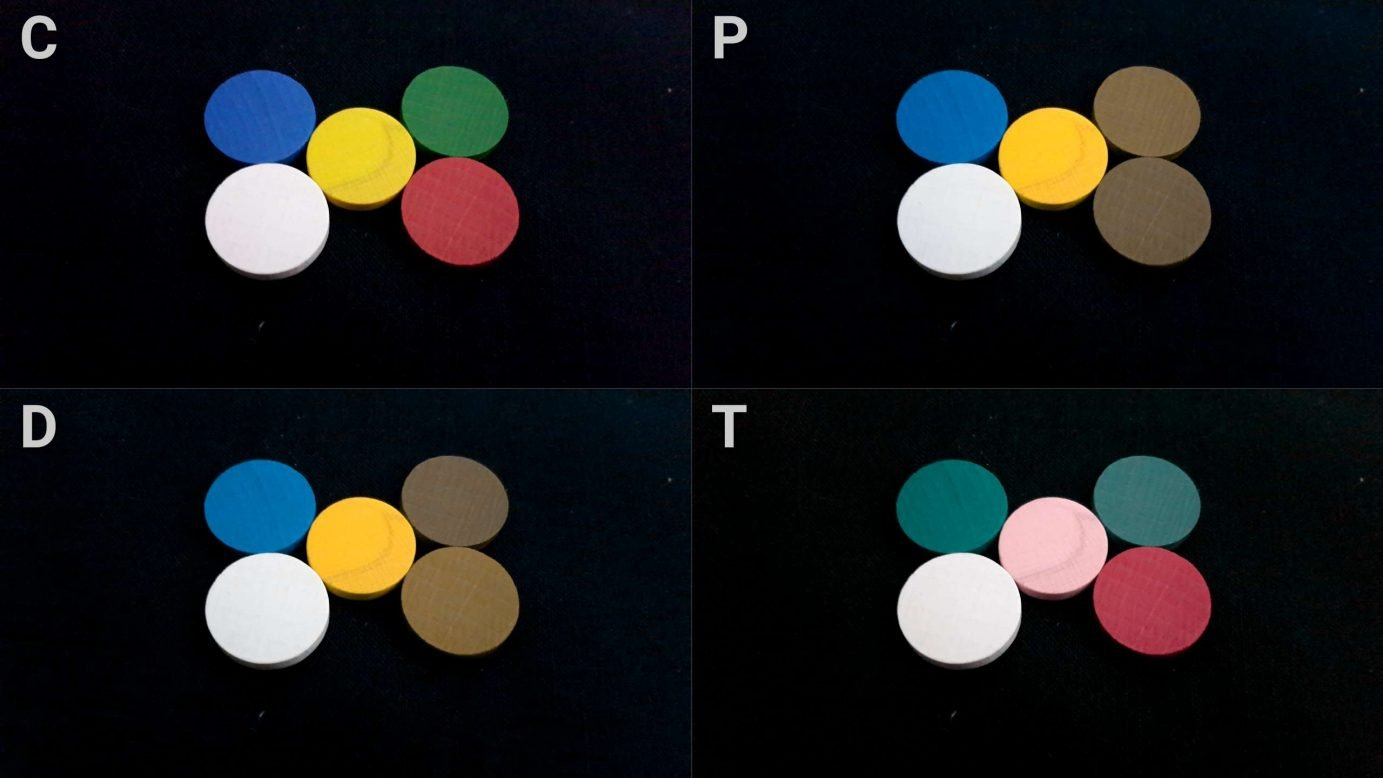 Worker discs and colour blindness